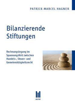 Bilanzierende Stiftungen von Hagner,  Patrick M