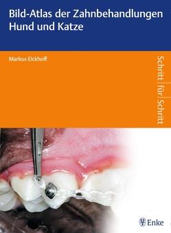 Bild-Atlas der Zahnbehandlungen Hund und Katze von Eickhoff,  Markus
