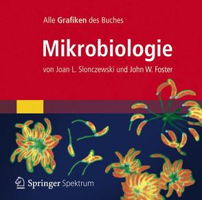 Bild-DVD, Mikrobiologie von Foster,  John W., Slonczewski,  Joan L.