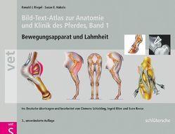 Bild-Text-Atlas zur Anatomie und Klinik des Pferdes von Elter,  Ingrid, Hakola,  Susan E., Reese,  Sven, Riegel,  Ronald J., Schickling,  Clemens