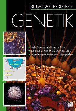 Bildatlas Biologie / DVD 2 – Genetik von Leroy,  Frances