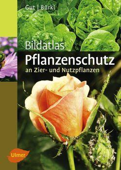 Bildatlas Pflanzenschutz an Zier- und Nutzpflanzen von Bürki,  Moritz, Gut,  Philipp