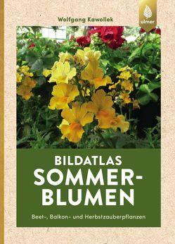 Bildatlas Sommerblumen von Kawollek,  Wolfgang