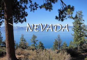 Bildband Nevada von Gräf,  Bernd