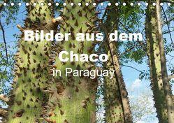 Bilder aus dem Chaco in Paraguay (Tischkalender 2019 DIN A5 quer) von Kristin von Montfort,  Gräfin
