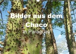 Bilder aus dem Chaco in Paraguay (Wandkalender 2018 DIN A3 quer) von Kristin von Montfort,  Gräfin