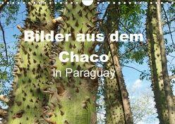 Bilder aus dem Chaco in Paraguay (Wandkalender 2018 DIN A4 quer) von Kristin von Montfort,  Gräfin
