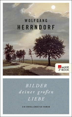 Bilder deiner großen Liebe von Herrndorf,  Wolfgang