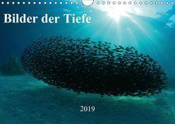 Bilder der Tiefe 2019 (Wandkalender 2019 DIN A4 quer) von Hablützel,  Martin