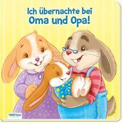 """Bilderbuch """"Ich übernachte bei Oma und Opa"""""""