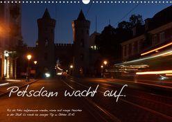 Bildkalender Potsdam 2019 (Wandkalender 2019 DIN A3 quer) von Peitz,  Martin