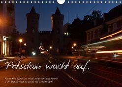 Bildkalender Potsdam 2019 (Wandkalender 2019 DIN A4 quer) von Peitz,  Martin
