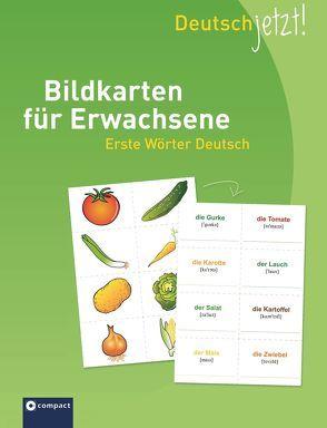 Deutsch jetzt! Bildkarten für Erwachsene – Erste Wörter Deutsch von Fischer,  Anke