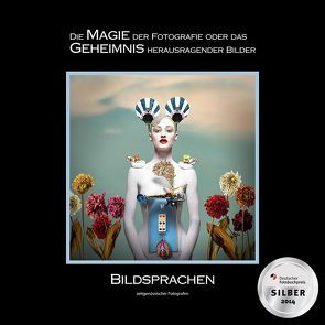 BILDSPRACHEN zeitgenössischer Fotografen von Zurmühle,  Martin