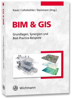 BIM & GIS von Kauer,  Josef, Lehmkühler,  Hardy, Steinmann,  Rasso