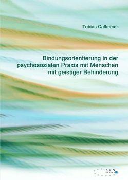Bindungsorientierung in der psychosozialen Praxis mit Menschen mit geistiger Behinderung von Callmeier,  Tobias