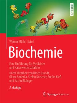 Biochemie von Müller-Esterl,  Werner