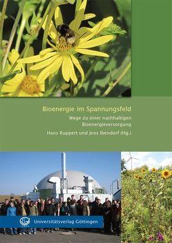 Bioenergie im Spannungsfeld von Ibendorf,  Jens, Ruppert,  Hans