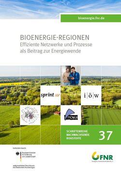 Bioenergie Regionen Begleitforschung II