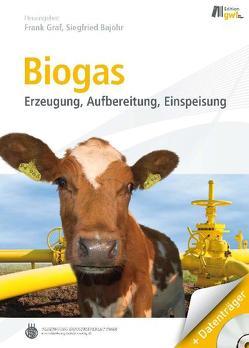 Biogas von Bajohr,  Siegfried, Gräf,  Frank