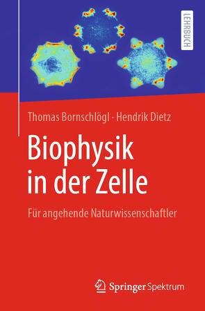 Biophysik in der Zelle von Bornschlögl,  Thomas, Dietz,  Hendrik