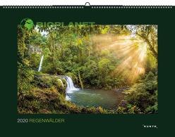 BIOPLANET: Regenwälder 2020