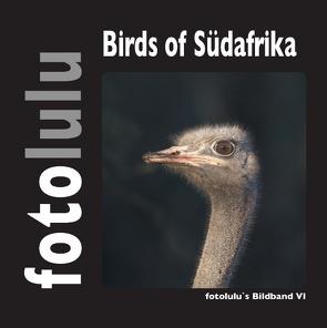 Birds of Südafrika von fotolulu