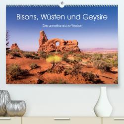 Bisons, Wüsten und Geysire. Der amerikanische Westen (Premium, hochwertiger DIN A2 Wandkalender 2020, Kunstdruck in Hochglanz) von Knaack,  Martin