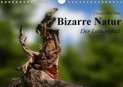 Bizarre Natur – Der Lotharpfad (Wandkalender 2018 DIN A4 quer) von Di Chito,  Ursula