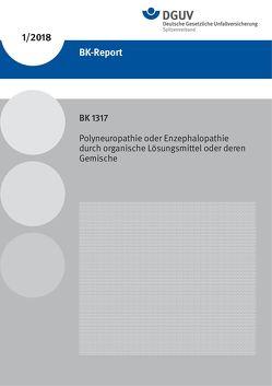 BK-Report 1/2018 BK 1317