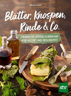 Blätter, Knospen, Rinde & Co. von Asamer,  Ursula