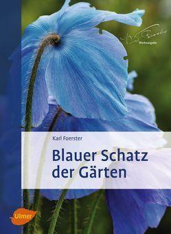 Blauer Schatz der Gärten von Foerster,  Karl, Kuhn,  Norbert
