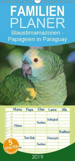 Blaustirnamazonen – Papageien in Paraguay – Familienplaner hoch (Wandkalender 2019 , 21 cm x 45 cm, hoch) von Schneider,  Bettina
