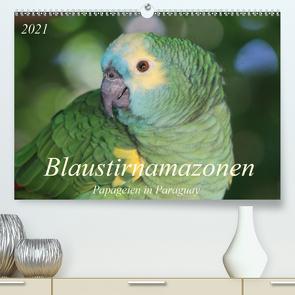 Blaustirnamazonen – Papageien in Paraguay (Premium, hochwertiger DIN A2 Wandkalender 2021, Kunstdruck in Hochglanz) von Schneider,  Bettina