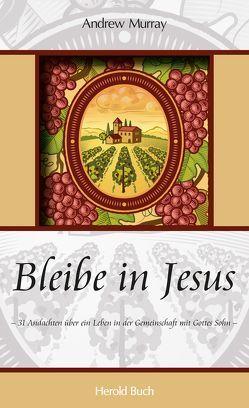 Bleibe in Jesus von Murray,  Andrew