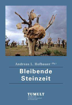 Bleibende Steinzeit von Hofbauer,  Andreas