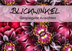 Blickwinkel – gespiegelte Ansichten (Wandkalender 2019 DIN A2 quer) von Yles.Photo.Art
