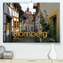 Blomberg in Lippe (Premium, hochwertiger DIN A2 Wandkalender 2020, Kunstdruck in Hochglanz) von Berg,  Martina