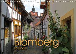 Blomberg in Lippe (Wandkalender 2018 DIN A4 quer) von Berg,  Martina