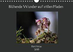 Blühende Wunder auf stillen Pfaden (Wandkalender 2019 DIN A4 quer) von Won,  Pörli