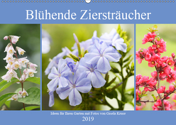 Blühende Ziersträucher (Wandkalender 2019 DIN A2 quer) von Kruse,  Gisela