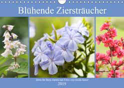 Blühende Ziersträucher (Wandkalender 2019 DIN A4 quer) von Kruse,  Gisela