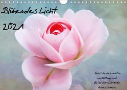 Blühendes Licht (Wandkalender 2021 DIN A4 quer) von Walter,  Hannelore