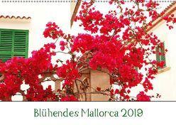 Blühendes Mallorca 2019 (Wandkalender 2019 DIN A2 quer) von May,  Ela