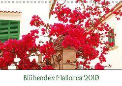 Blühendes Mallorca 2019 (Wandkalender 2019 DIN A4 quer) von May,  Ela