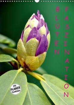 Blüten Faszination (Wandkalender 2019 DIN A3 hoch) von GUGIGEI