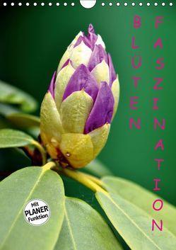 Blüten Faszination (Wandkalender 2019 DIN A4 hoch) von GUGIGEI