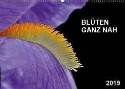 Blüten ganz nah (Wandkalender 2019 DIN A2 quer) von Bauer,  Friedhelm