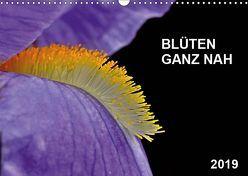 Blüten ganz nah (Wandkalender 2019 DIN A3 quer) von Bauer,  Friedhelm
