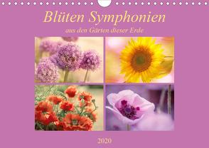 Blüten Symphonien aus den Gärten dieser Erde (Wandkalender 2020 DIN A4 quer) von Riedel,  Tanja